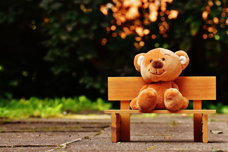 bear-bench-child-207891